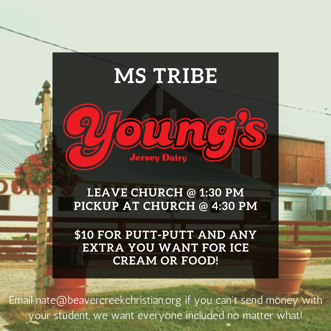 MS Tribe